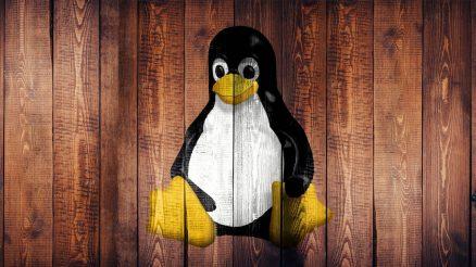 Denborapasa teknologiko produktibo euskaltzaleak itxialdirako (eta 7): Ausartu Linuxekin! 5