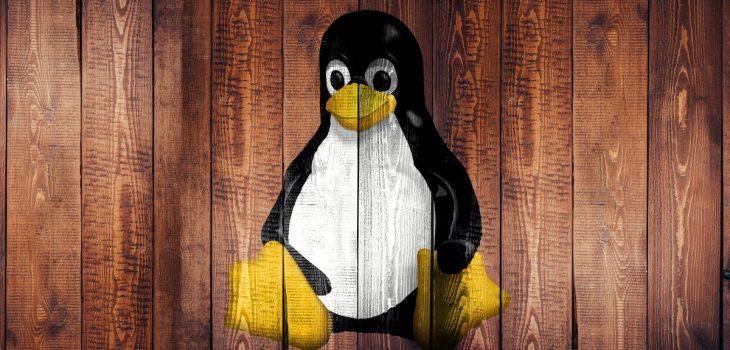 Denborapasa teknologiko produktibo euskaltzaleak itxialdirako (eta 7): Ausartu Linuxekin! 9