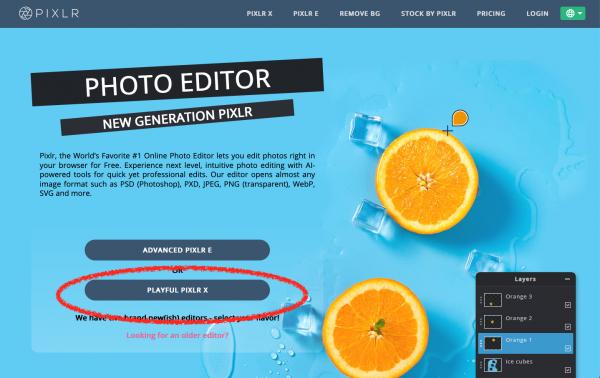 Pixlr.com webgunea onlineko irudi editore bat da.